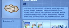 Widow's Mirror