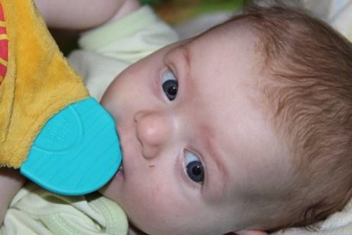 Abby - 3 months!