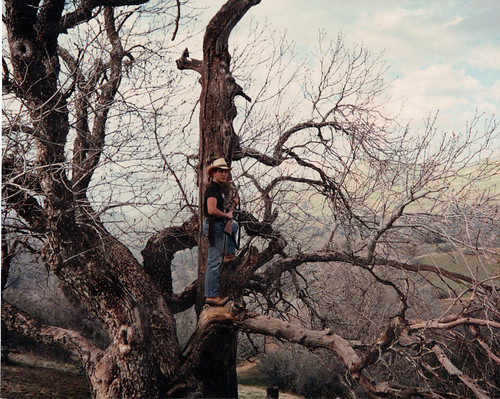 Me in a tree with Ka-Bar