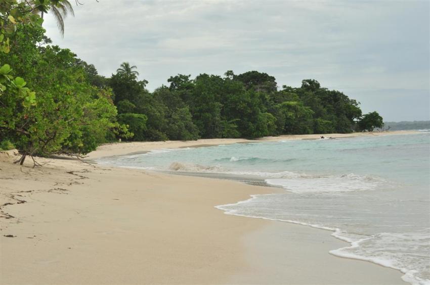 Paradisíacas playas frente a un poco profundo arrecife lleno de vida y color.