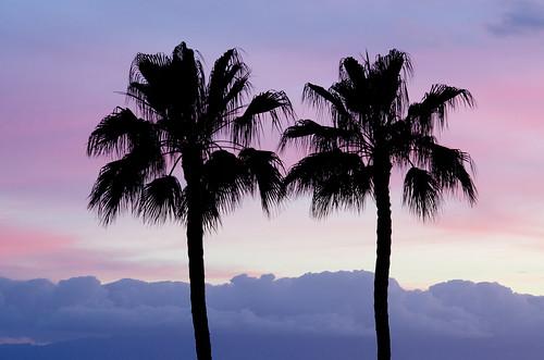 Paradise sunset in Los Gigantes, Tenerife