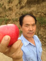 Mr. Feng, apple farmer Luochuan China