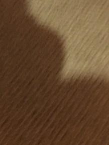 Weird blurry carpet, I choose you!