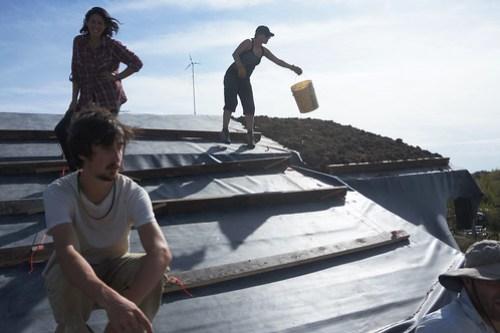 Living Roof Retaining Ladder