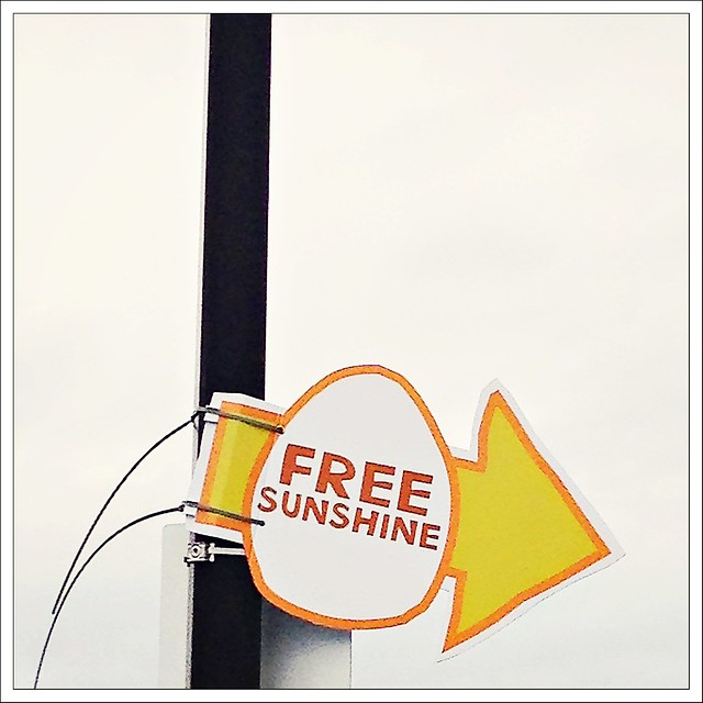 (358/366) Free Sunshine