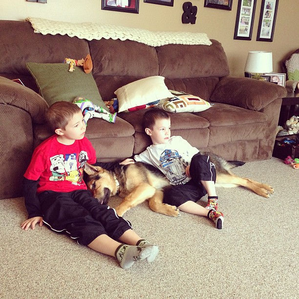 Two boys and their dog, watching Toy Story 3. Notice Buzz and Woody behind them. Love this.