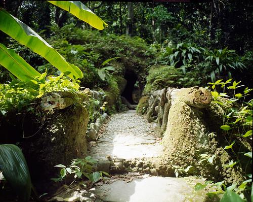 Stone path in Brazil