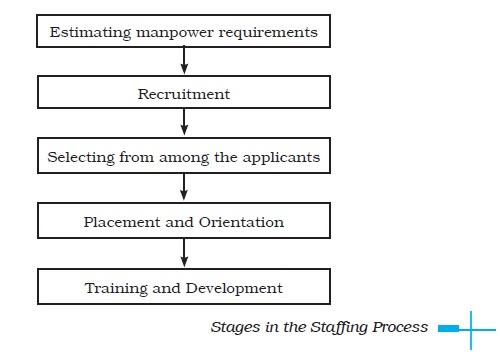 NCERT Class XII Business Studies: Chapter 6   Staffing Image by AglaSem