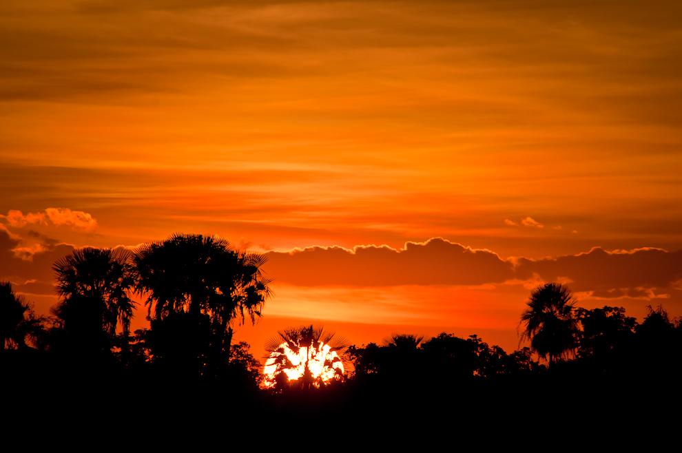 El sol se esconde en el horizonte destacando las siluetas de los árboles de Karanda´y, este espectáculo visual es típico del Chaco, en el que también conjugan algunas aves y cielo rojizo, sentarse a contemplar esta belleza natural es reconfortante. (Elton Núñez)