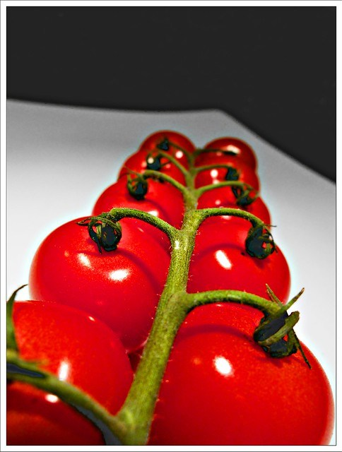 (252/366) Knowledge is knowing a tomato is a fruit. . .