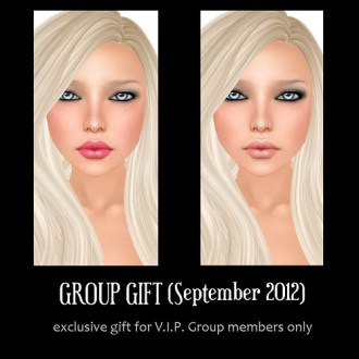 VIP Group Gift (September 2012)