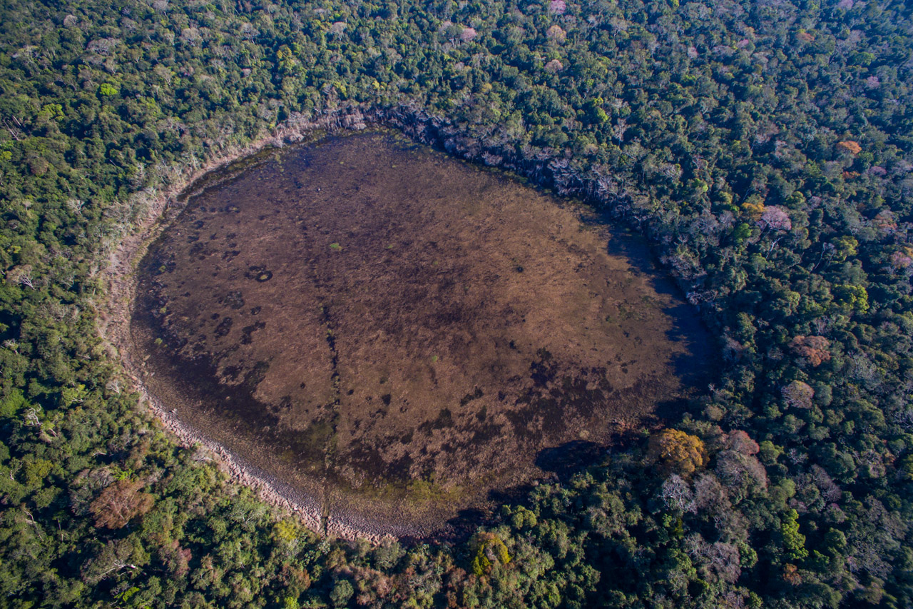 En uno de los recorridos por los bosques de la Reserva Morombí, encontramos esta pequeña laguna. (Tetsu Espósito).