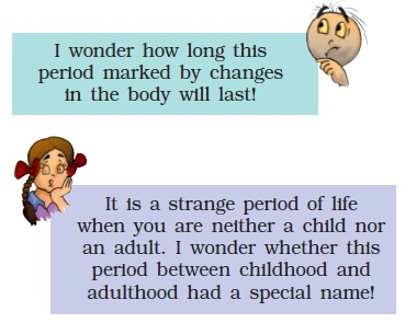 NCERT Class VIII Science Chapter 10 Reaching the age of Adolscence Image by AglaSem