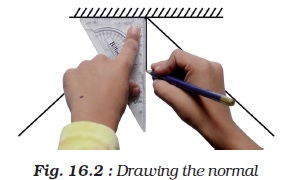 NCERT Class VIII Science Chapter 16 Light Image by AglaSem
