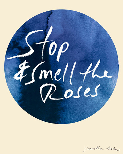 stop-and-smell-the-roses_Samantha-Hahn