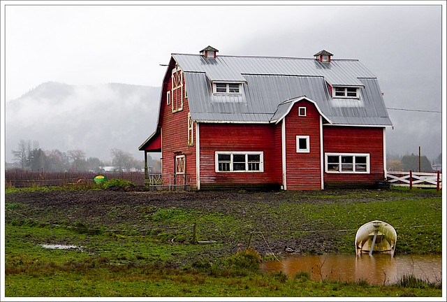 (346/366) Soggy Red Barn