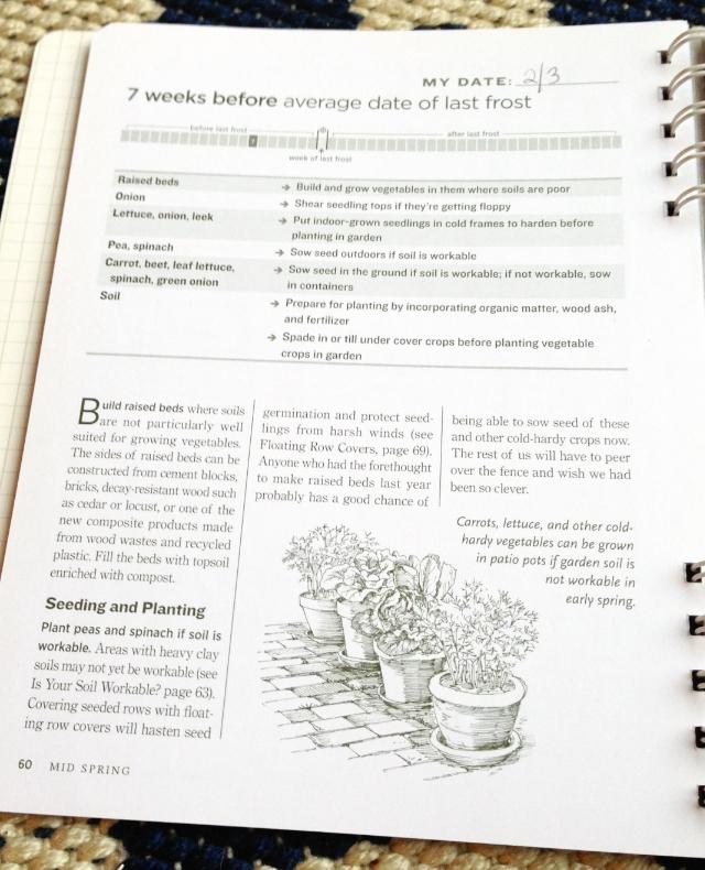 Feb Gardening