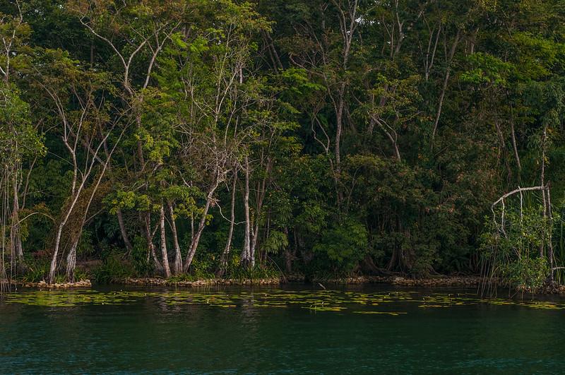 Sailing Rio Dulce-22