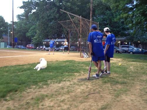 Softball game one