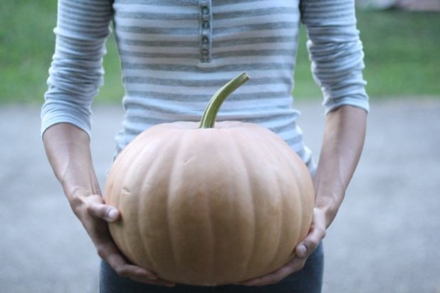 The Giant Pumpkin | FoodLovesWriting.com