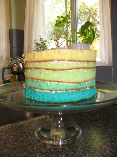 My Blue Ombré Cake before icing goes on the outside