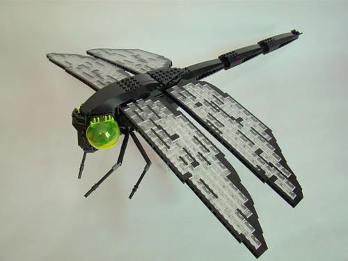 Dragonfly - 03