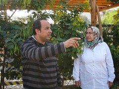 Wael Sabry and Nashwa Ibrahim.