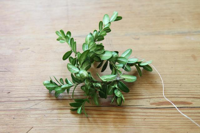miniature boxwood wreath