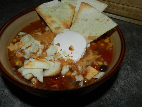 Chicken Enchilada Soup (8)