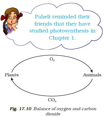 NCERT Class VII Science Chapter 17 Our Lifeline Image by AglaSem