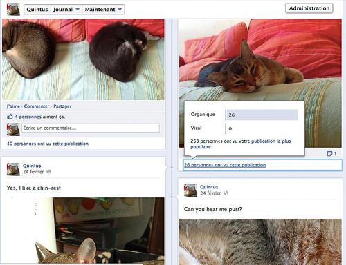 Quintus Facebook screenshot