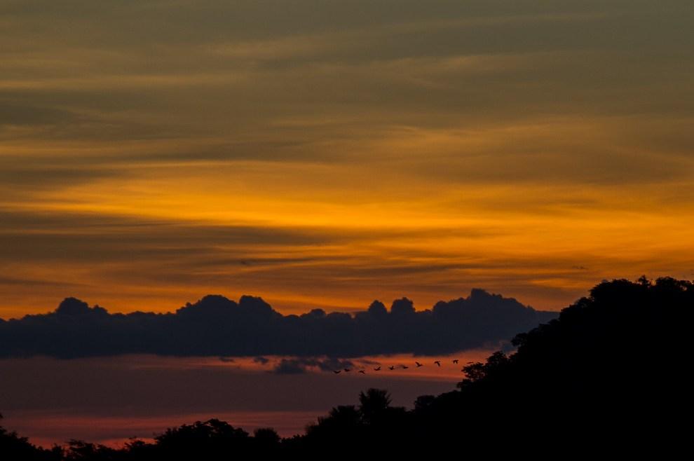 Los atardeceres en el Pantanal no dejan de sorprender a los visitantes brindando un show de colores y formas.(Tetsu Espósito)
