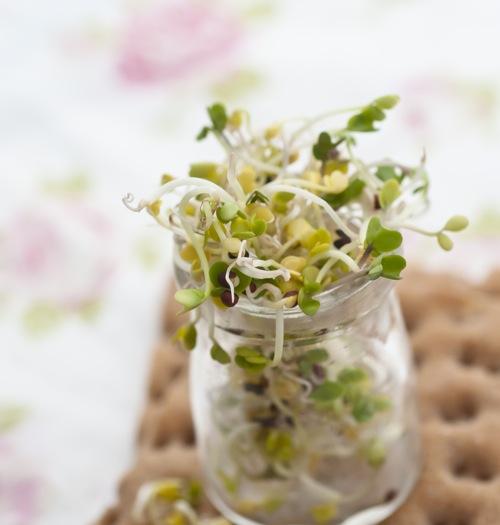 hummus roz (1 of 1)-2