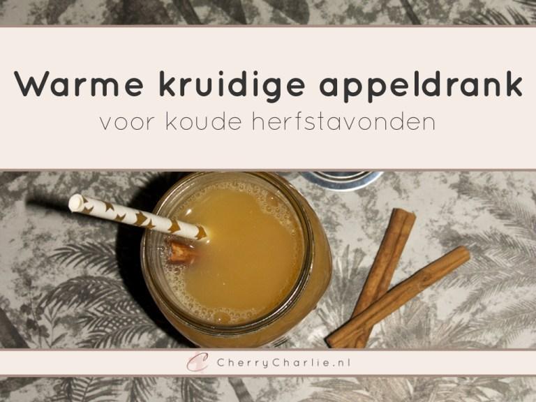 Warme kruidige appeldrank voor koude herfstavonden • CherryCharlie.nl