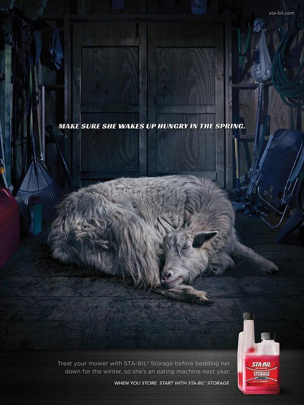 Sta-Bil Storage - Goat
