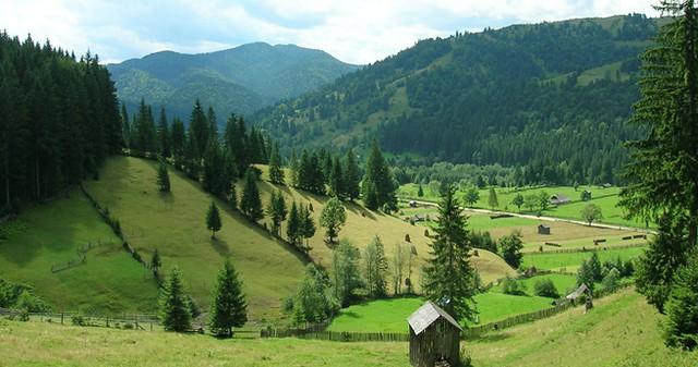 Valea_Sabasa_sat_Sabasa_Comuna_Borca