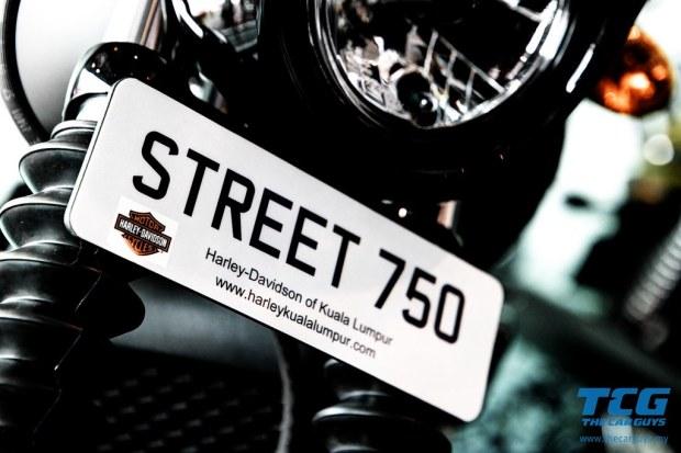 2015 Harley-Davidson Street 750 (7)