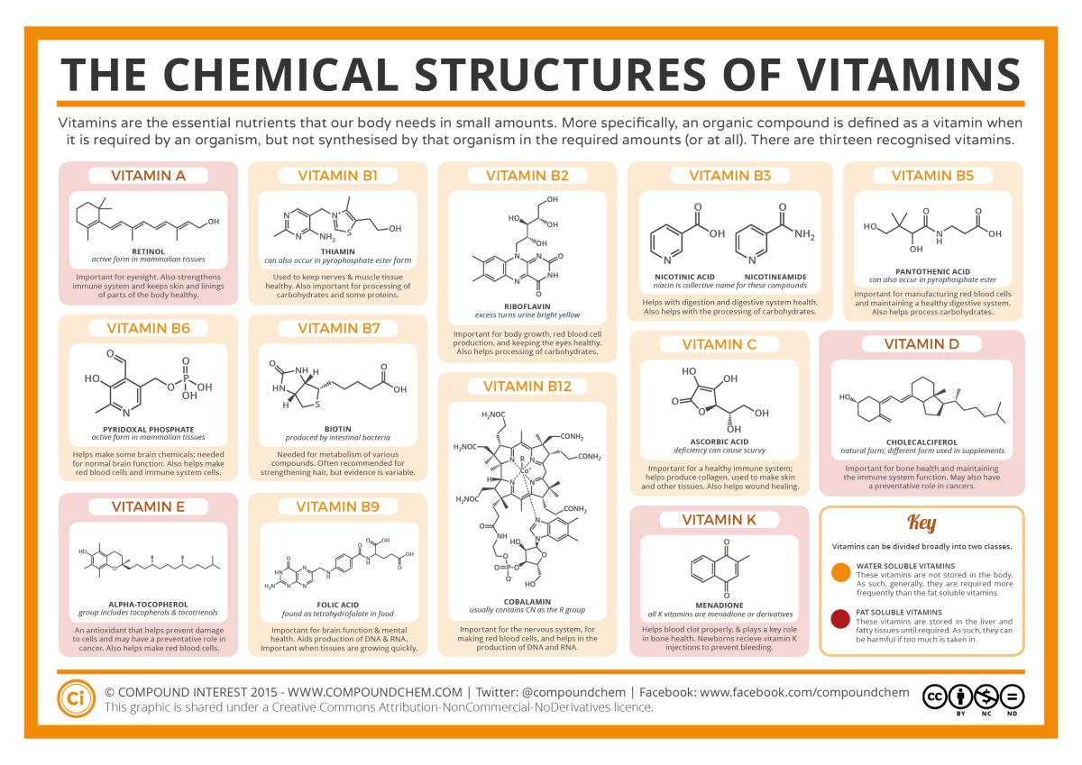 As Vitaminas e suas Funções