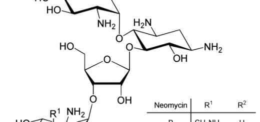 Neomycin