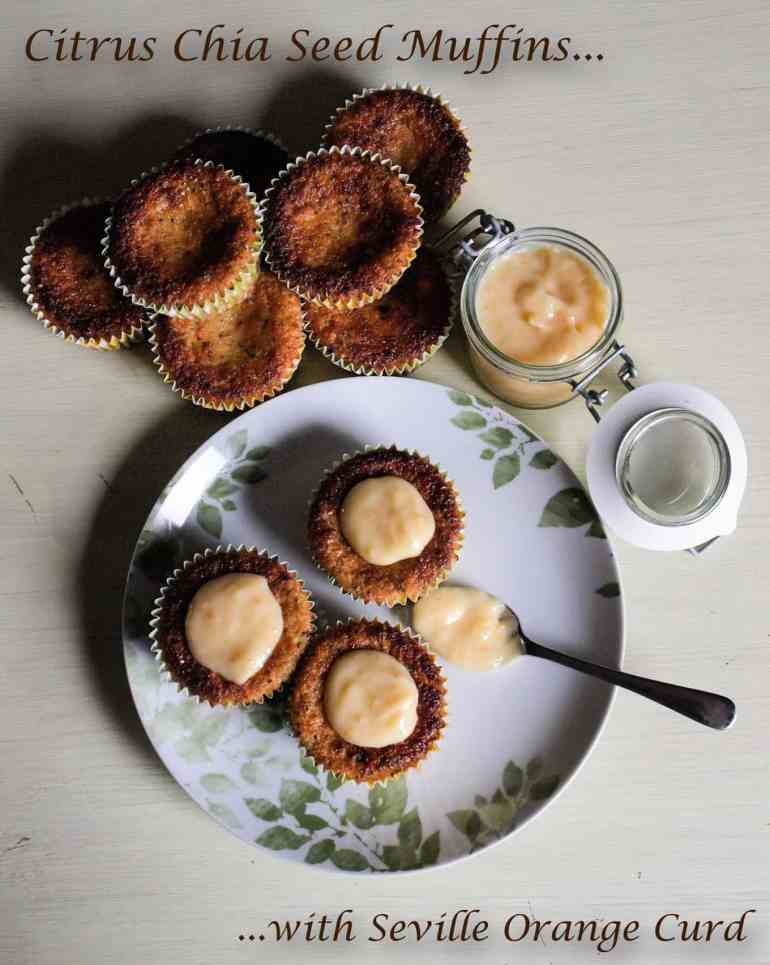 Citrus-Chia-Seed-Muffins-Ti