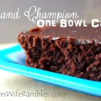 Grand Champion One Bowl Chocolate Cake