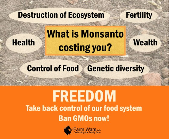 what is monsanto costing you copy