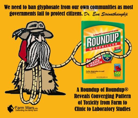 Roundup of Roundup