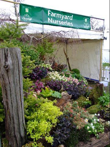 rhs cardiff flower show 2006