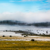 Fog lifts from a hayfield