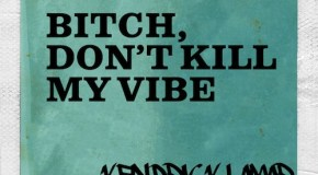Kendrick Lamar – Dont Kill My Vibe (International Remix) (Ft Emeli Sande)