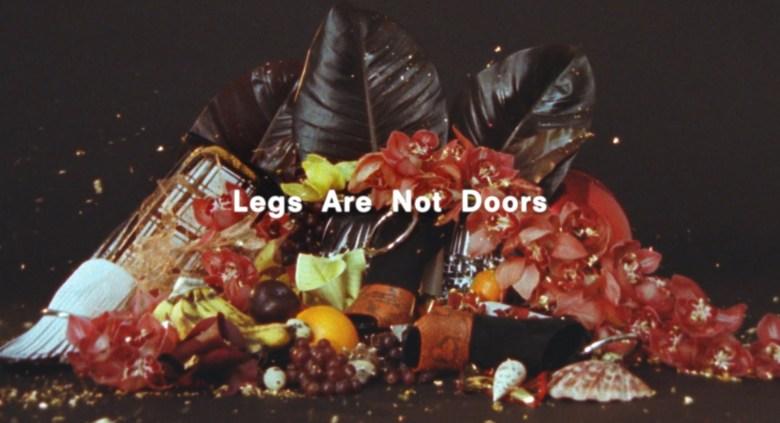 legs are not a door 3