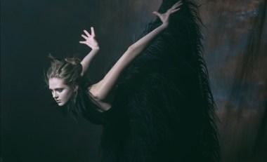 black_swan_10 (1)