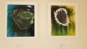 Christelle Boulé, exposition Drops @ Grand Musée du parfum Paris