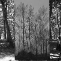 Marni: The Gray Garden